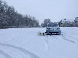 Renault ZOE und Hund im Schnee